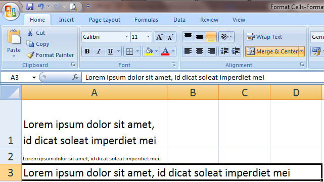 Excel 2007 Format Text